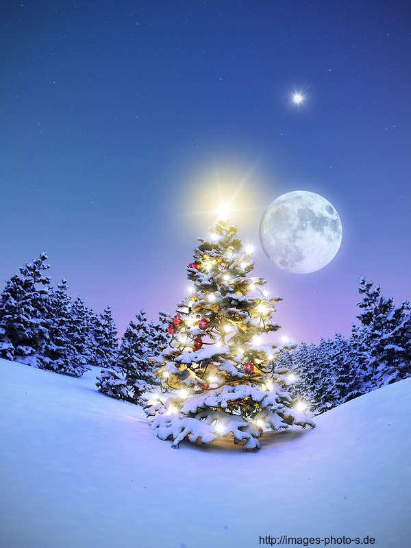 Besinnliche Weihnachtsbilder.Home